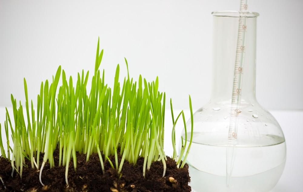 Secteur Agrobusiness